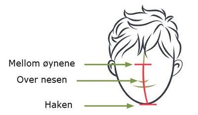 Finn Storrelse munnbind illustrasjon
